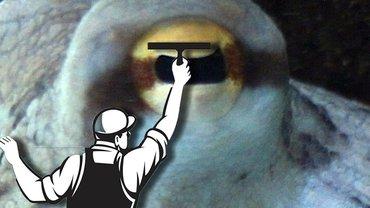 Augenwischerei